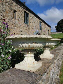 Wonderful Large Pair of English 19th Century Antique Iron Tazza Urns